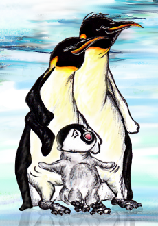 Penguin parents and chick - illustration from the free children's picture book 'Tuppence for Christmas'